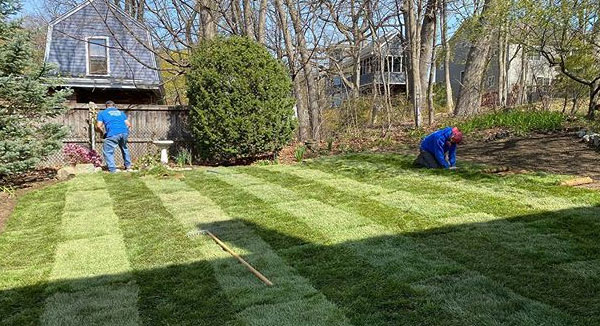 Landscaping J&E Corp